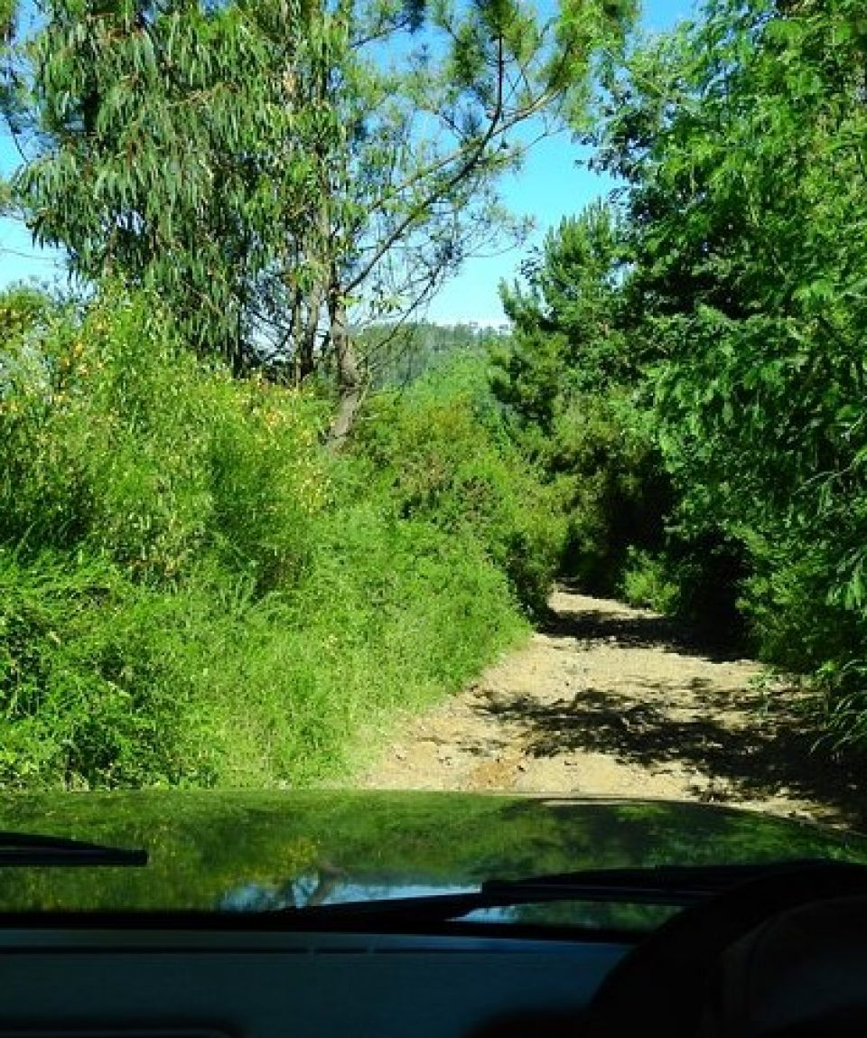 xoff-road Jeep 4x4 east tour (21)